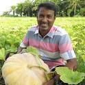 Isha Agro Movement